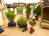 97265-hettstadt-brenndoerfel-terrasse-balkon-sanierung-beschichtung-wagner-steinteppich-04_thumbnail_200x150px.jpg